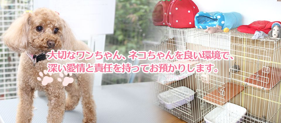 大切なワンちゃん、ネコちゃんを良い環境で、深い愛情と責任を持ってお預かりします。