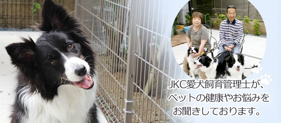 JKC愛犬飼育管理士が、ペットの健康やお悩みをお聞きしております。